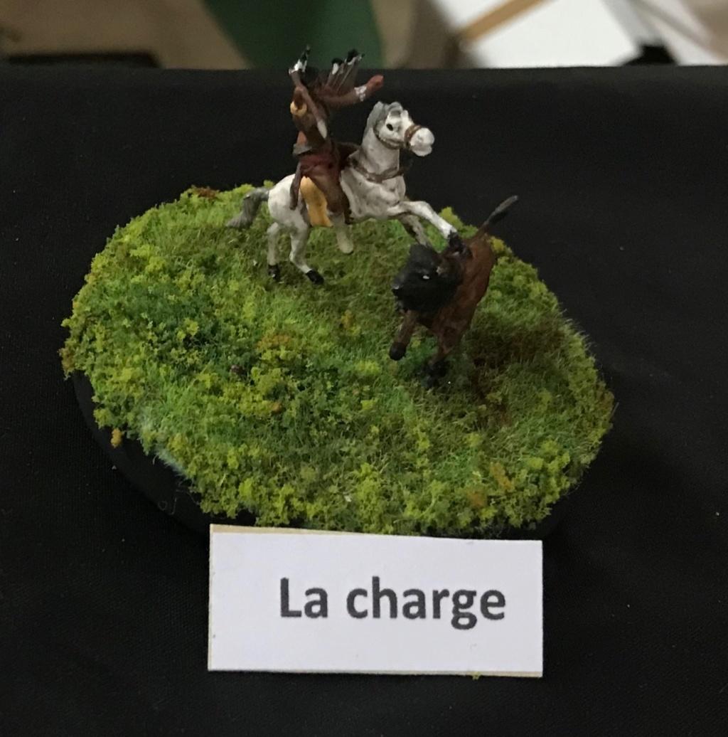 Maquet'Expo Onet le Château (Aveyron)  Image115