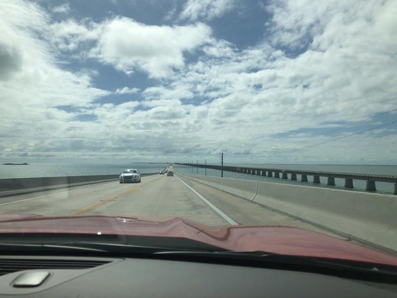 on en voit de belles en Floride !!! 16_vir10