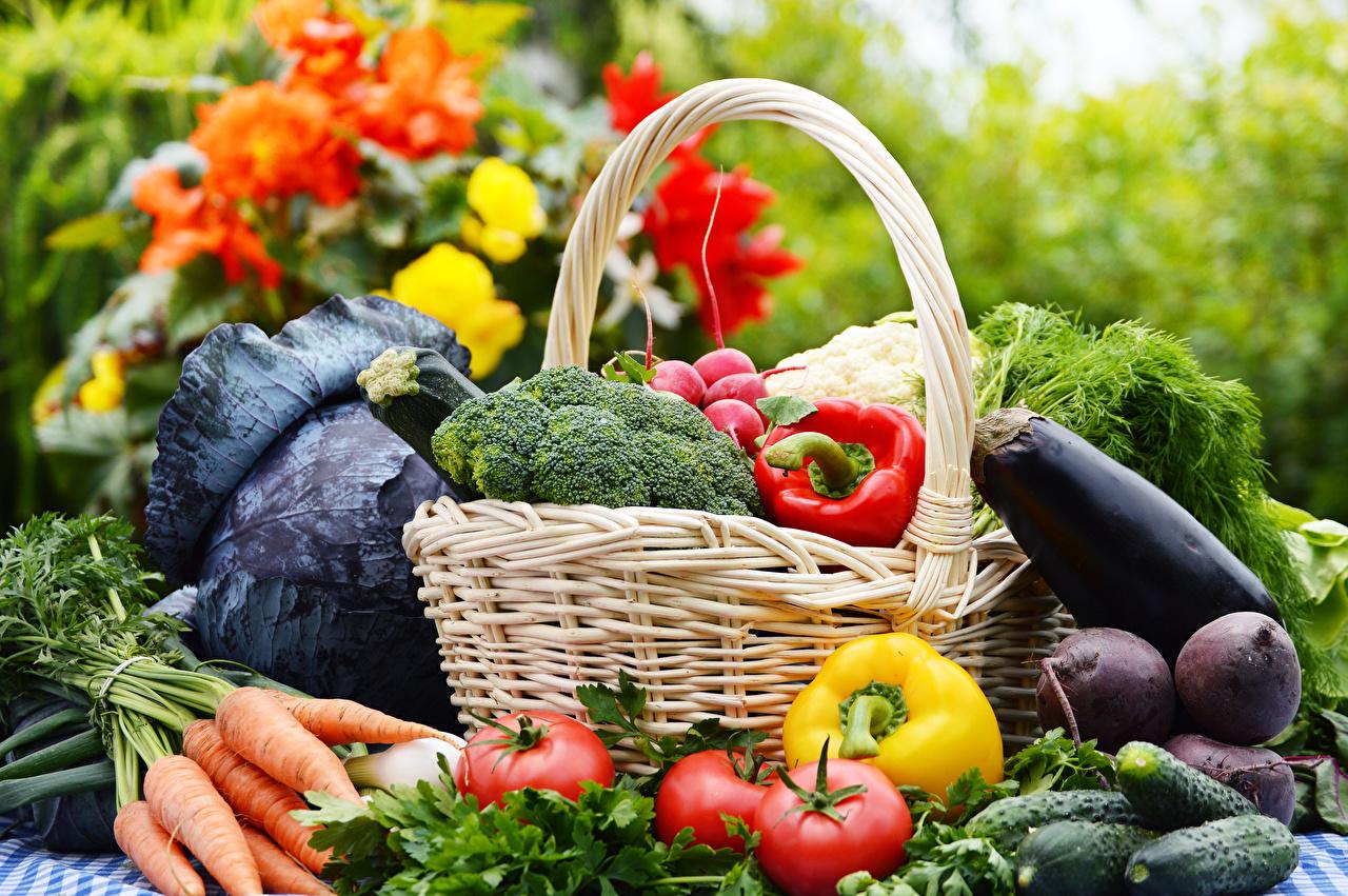 Povrće - Page 5 Vegeta16