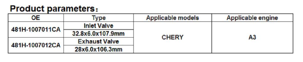 Chery Dimensiones de pistones y válvulas Difere10