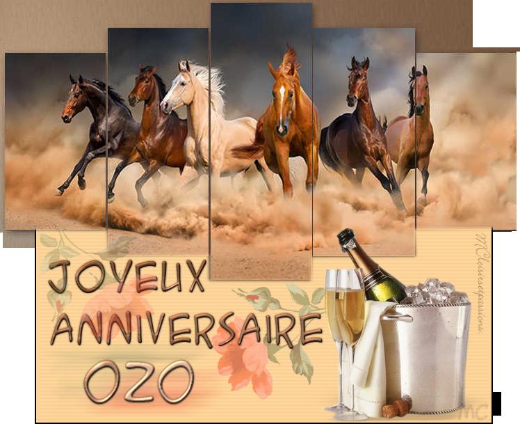 JOYEUX ANNIVERSAIRE OZO Carte_11