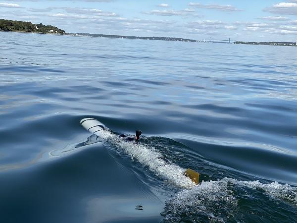 Iver4 900 : مركبة غير مأهوله تحت الماء  20200110