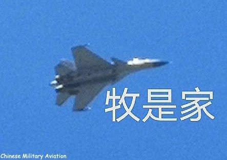 مقاتلة SHENYANG J-15 الصينية العاملة على حاملات الطائرات Eeshm_10