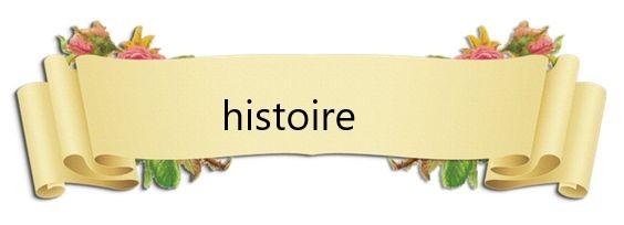 mon histoire  D1098148