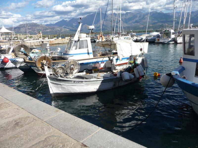 [VIE DES PORTS] Quelques bateaux de pêche (sur nos côtes Françaises) - Page 9 P1040611