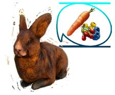 Guide: Bunn3h's Extras Mod Rabbit12