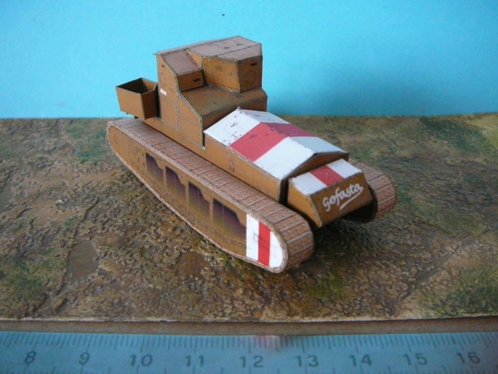 Modèles du site Landships P1080739
