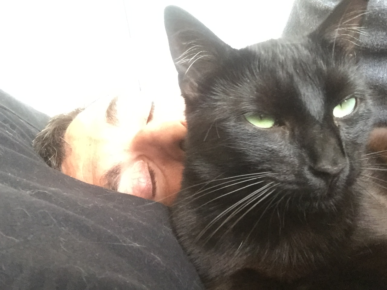 NYSSA, chatonne noire, née le 25/05/17 2018-014
