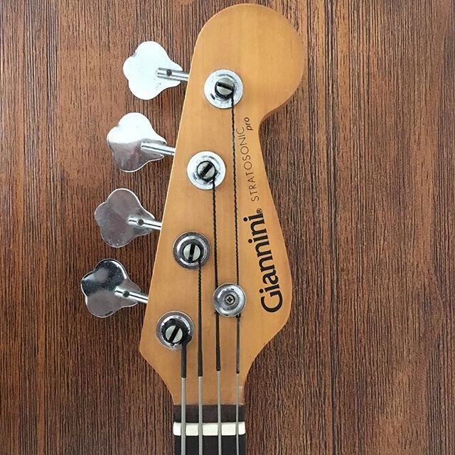 Fender Southern Cross - Entrevista com Carlos Assale 44442110