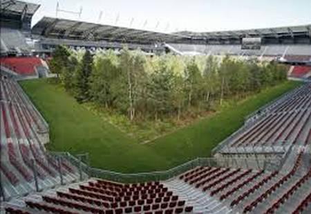 Une forêt plantée sur le terrain d'un stade autrichien. Foret10