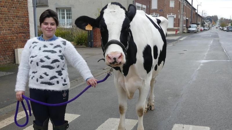 """À Aveluy, Laurie a sauvé la vache """"Olympia"""" de l'abattoir Laurie10"""