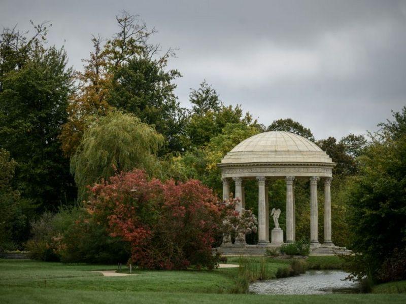 """Versailles célèbre ses """"arbres admirables"""".  Versai10"""