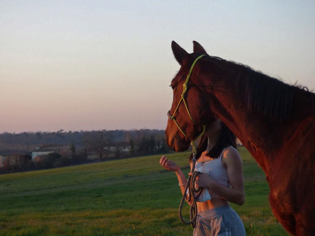 Dpt 17, 3 ans, Ganaya de Cravans, adoptée par Séléna (mars 2019) Picsar11
