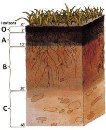 التربة Soil_p10