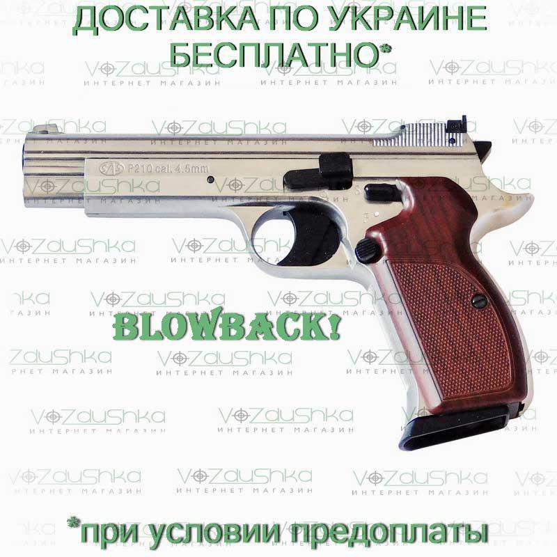 wish list ( liste de souhaits ) arme de poing P210_l13
