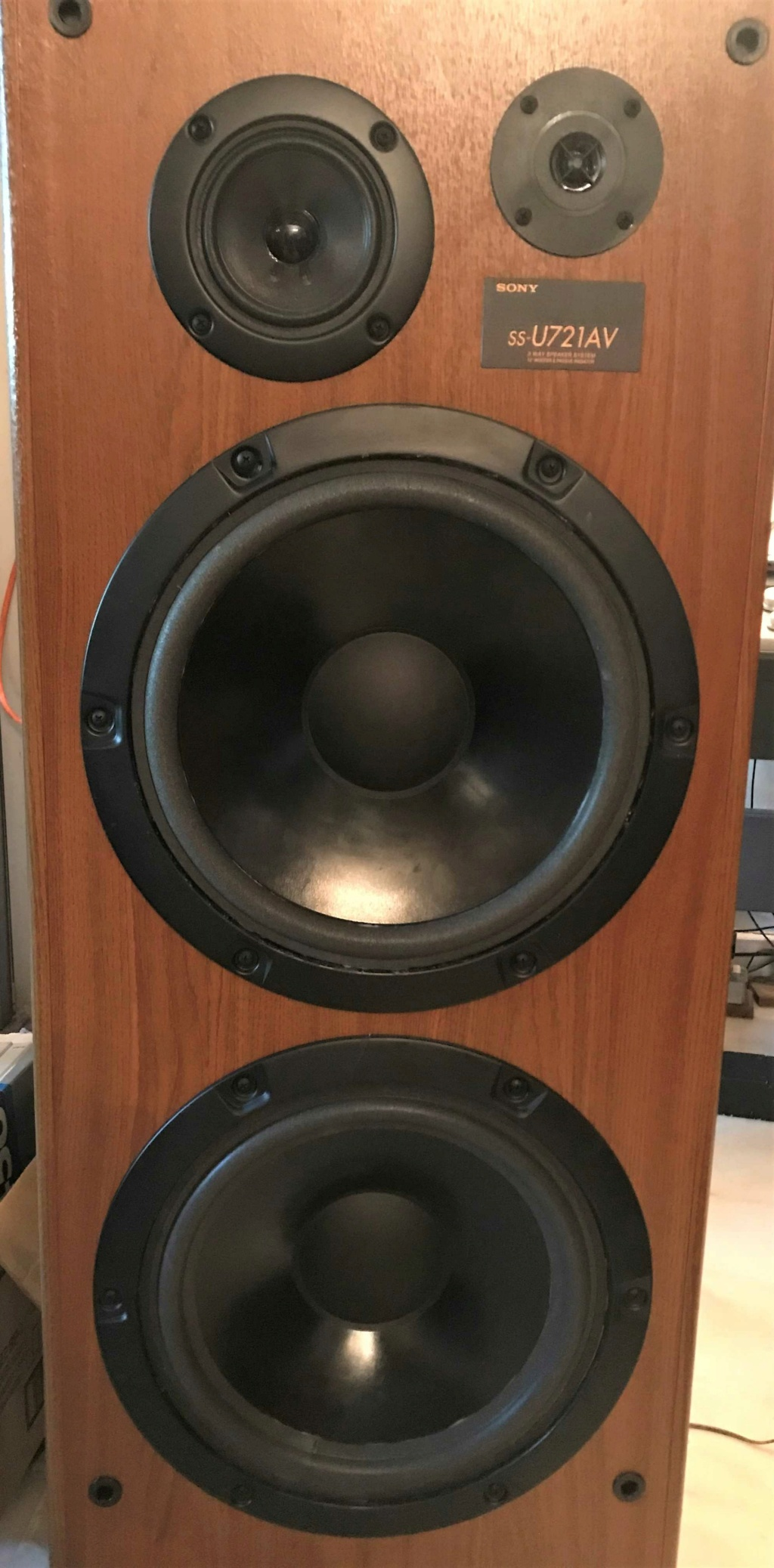"SONY 12"" Speaker Fronta10"