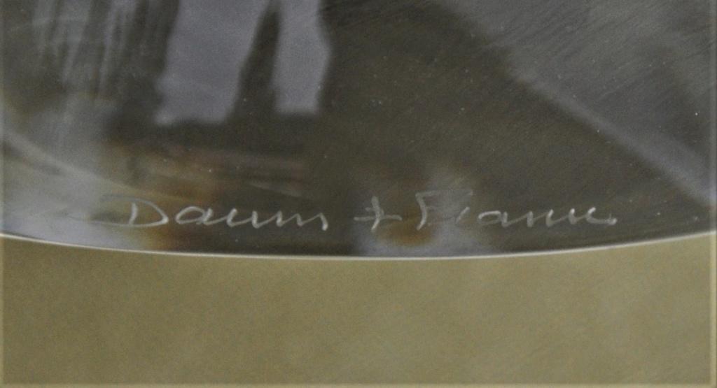 Vasque DAUM avec martin pêcheur.  Dsc_0039