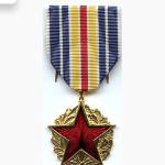 médaille des blessés de guerre Mdbdg10
