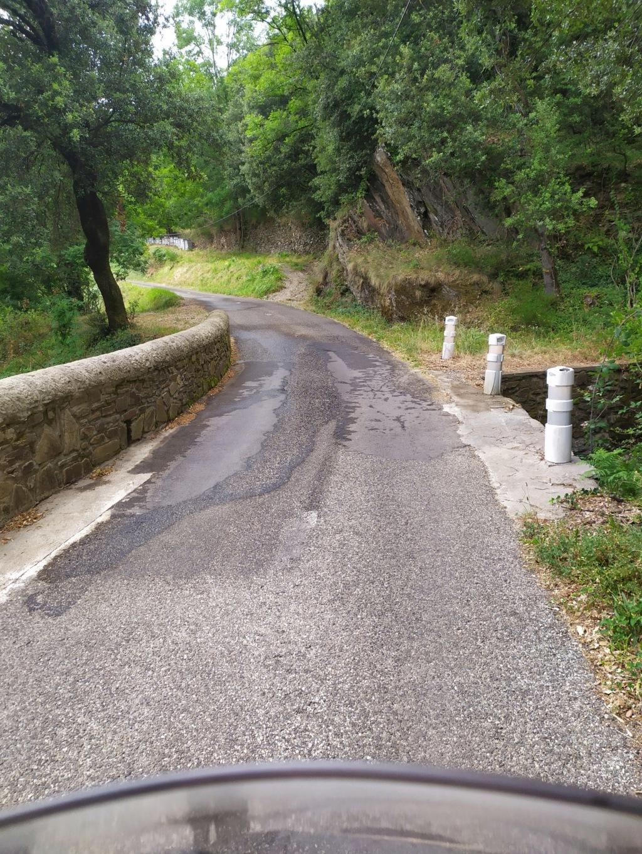 Balade jusqu'au Mont Aigoual Mont_a14