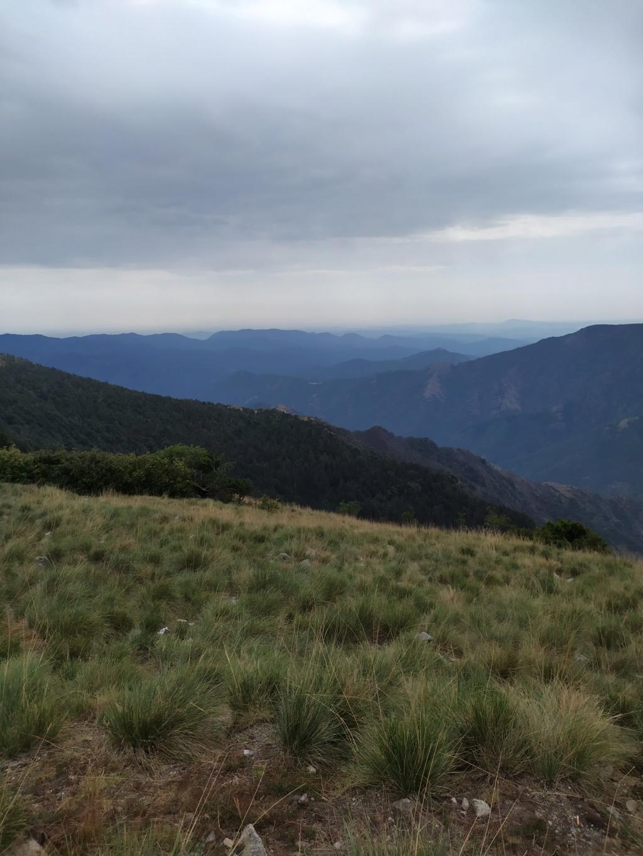 Balade jusqu'au Mont Aigoual Mont_a15