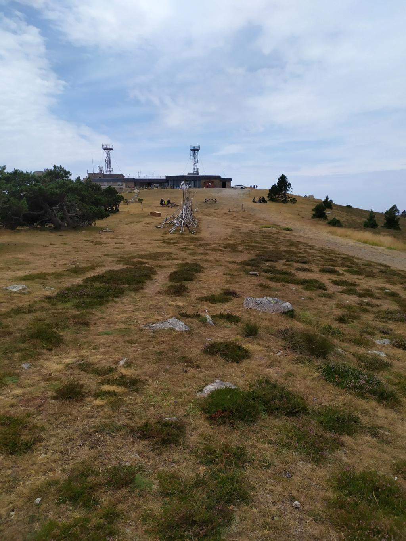 Balade jusqu'au Mont Aigoual Mont_a16