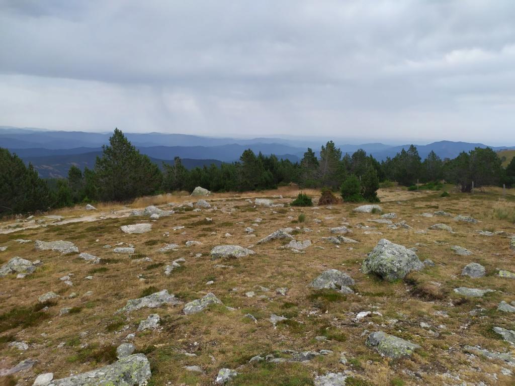 Balade jusqu'au Mont Aigoual Mont_a18