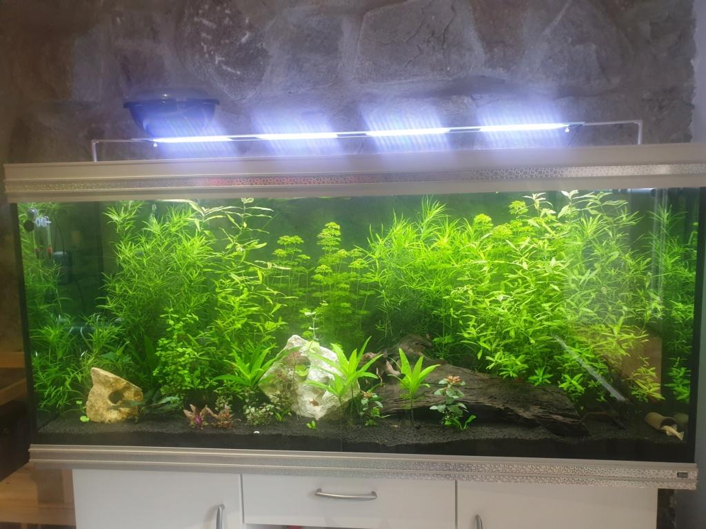 Rampe LED pour aquarium 150cm 20201211
