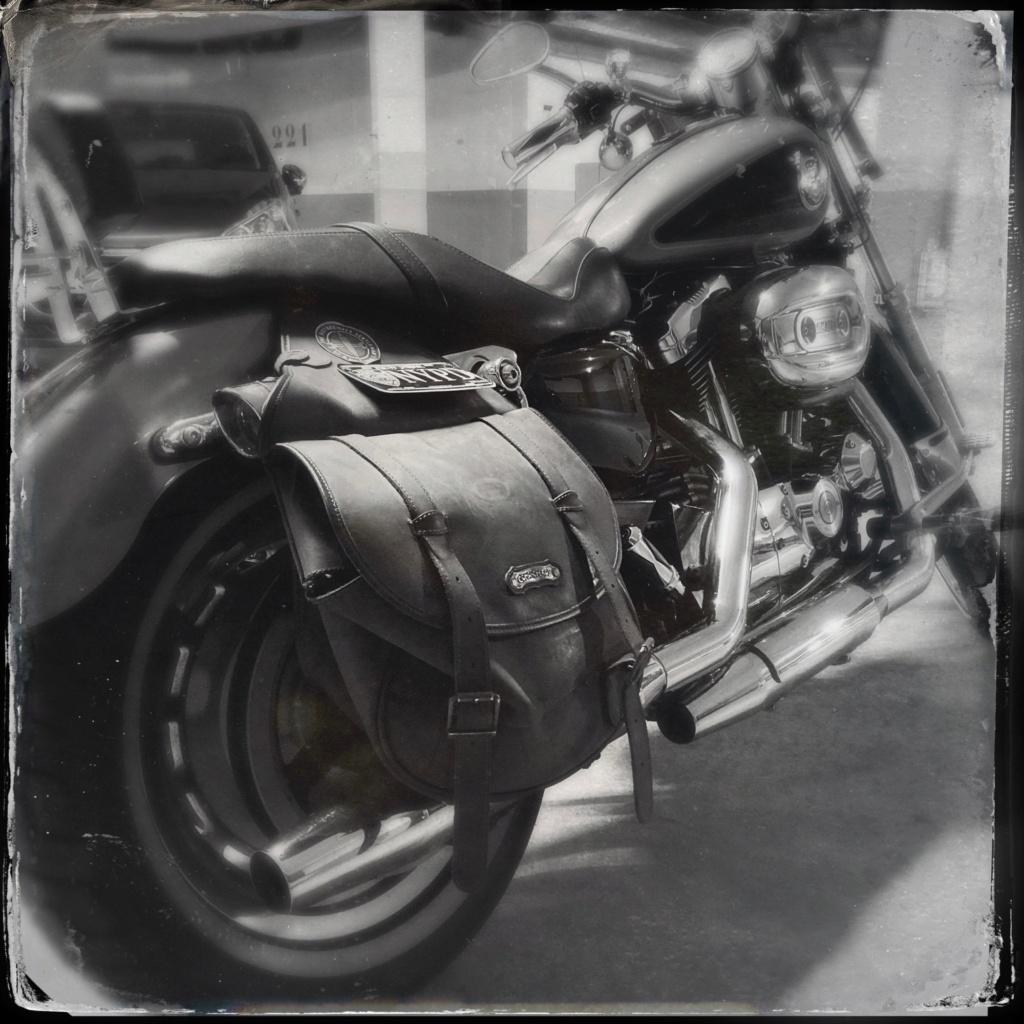 combien sommes nous en 1200 Sportster sur Passion-Harley - Page 39 Hipsta17