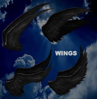 Pack 9 Renders de Wing .Png 000010