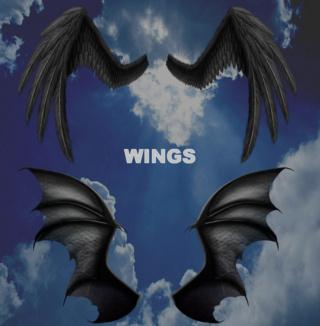 Pack 9 Renders de Wing .Png 00010