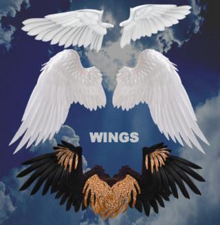 Pack 9 Renders de Wing .Png 0010