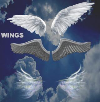 Pack 9 Renders de Wing .Png 010