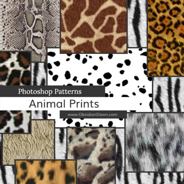 Animal Prints Photoshop Patterns Dm8dbd10