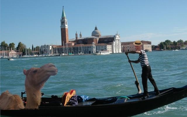 Photos en vrac - Page 4 Venise10