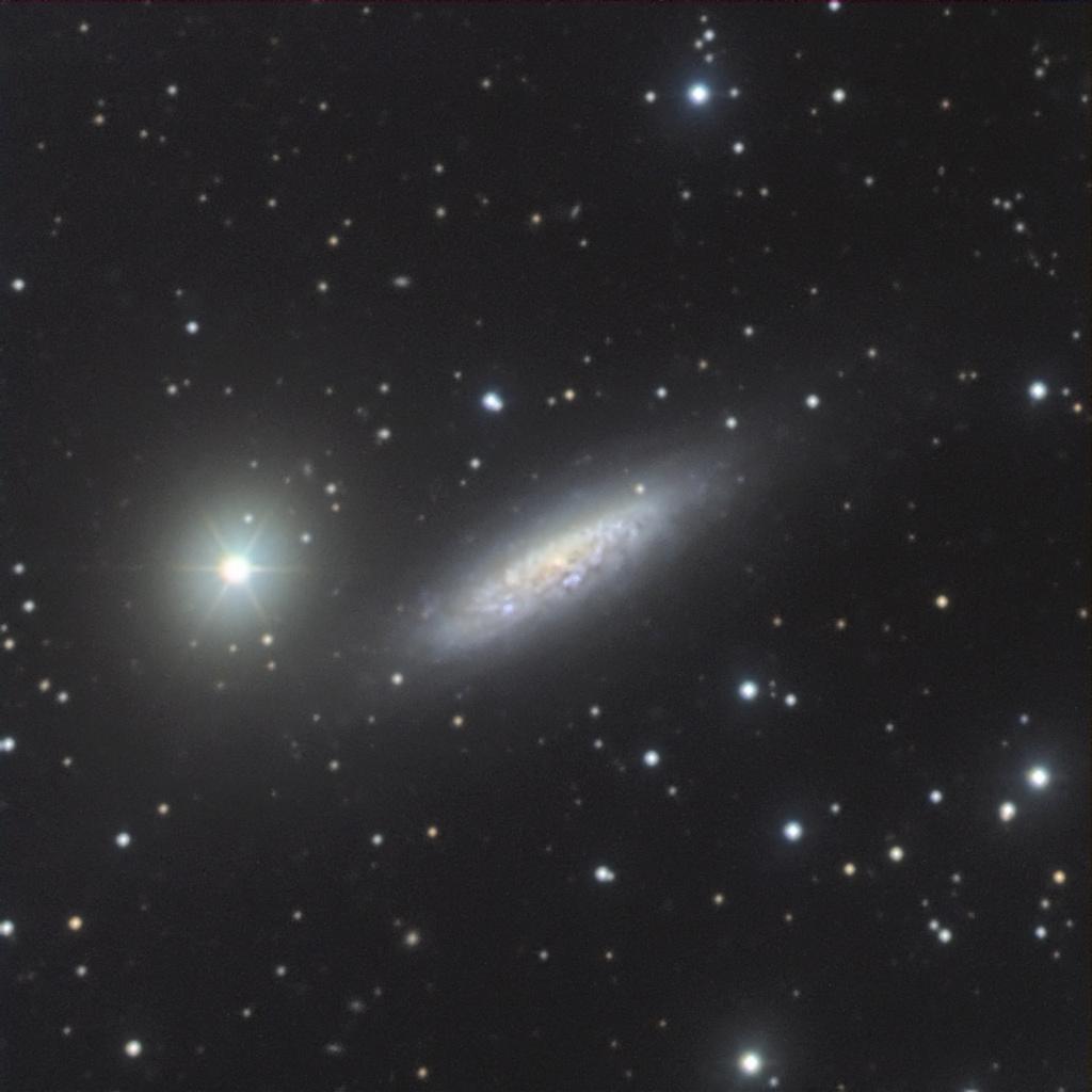 """La """"galaxie perdue"""" au T1,20m de l'OHP Ngc_6510"""