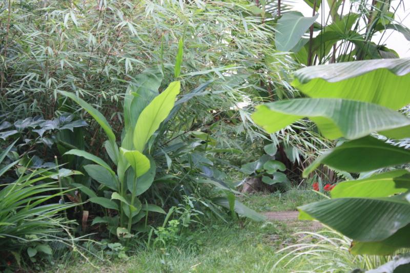 Les Jardins de Demetrius Img_7415