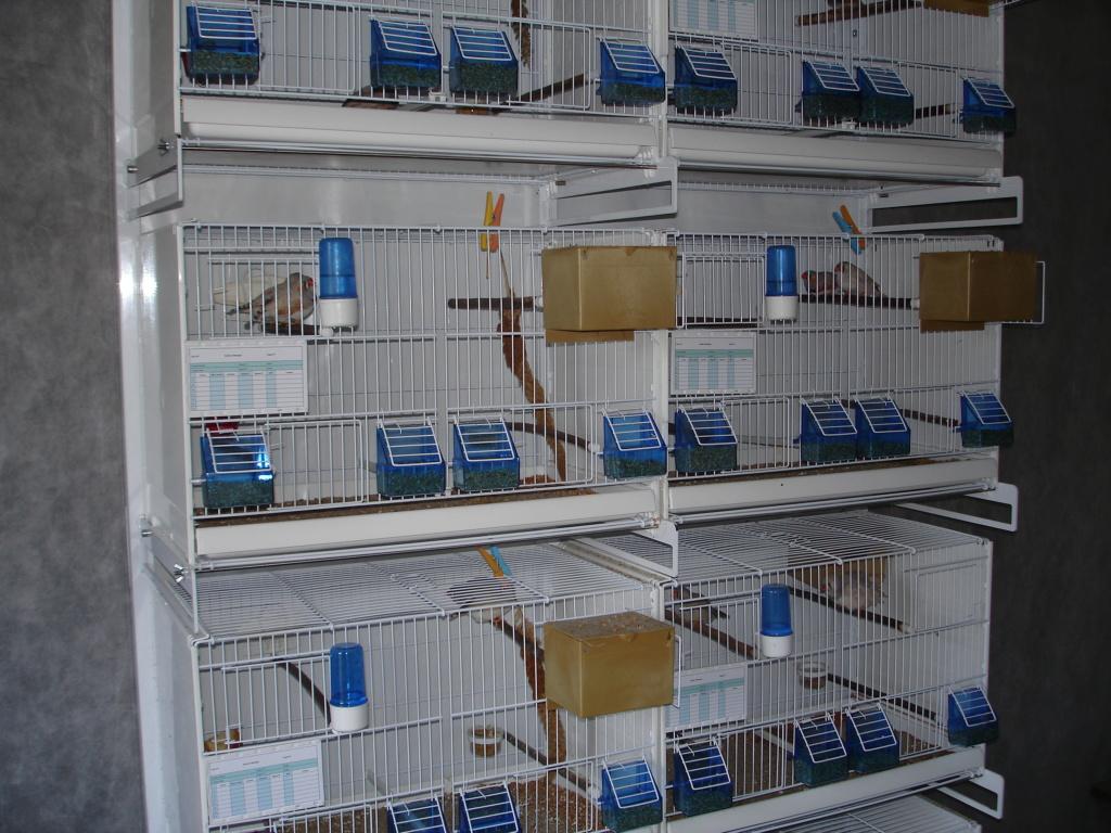 Mes cages pliables avec le chariot Dsc00212