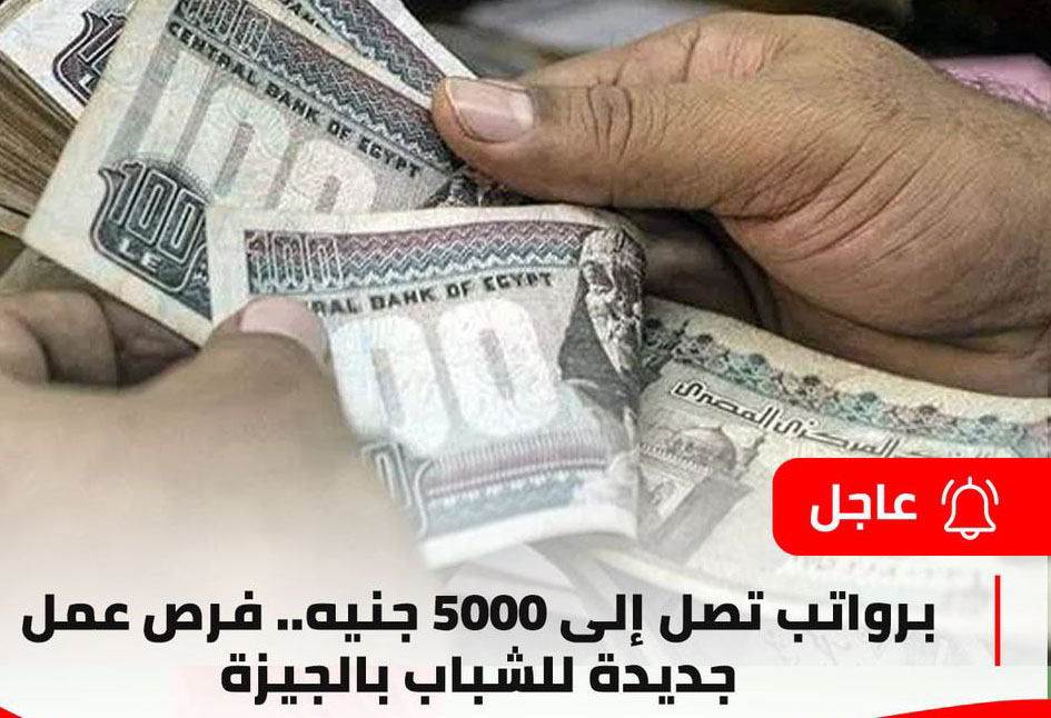 لشباب الجيزة - برواتب تصل إلى 5000 جنيه.. فرص عمل جديدة للشباب بالجيزة 12100910