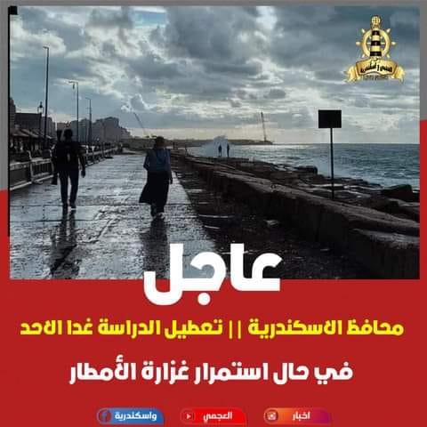 محافظ الإسكندرية يعلن تعطيل الدراسة غدا حال استمرار غزارة الأمطار 12410510