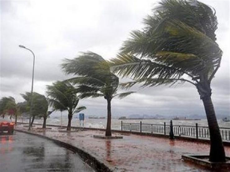 الثلاثاء الأرصاد الجوية – درجات الحررة صفر فى بعض المناطق وصقيع وعواصف و أمطار فى معظم الأنحاء 2019_112