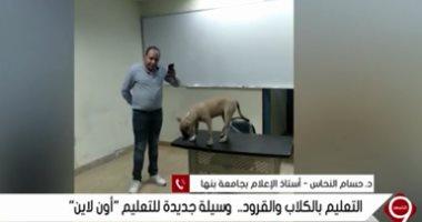 """إعلاميون يستنكرون طريقة تعليم مدرس للنشء بالقرود والكلاب ويصفها بـ""""المهزلة"""" 20200911"""