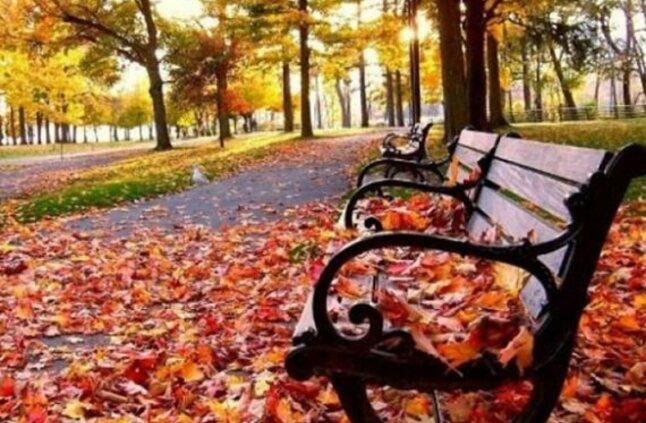 الأربعاء المقبل بداية فصل الخريف.. الأرصاد الجوية تحذر الواطنين من تقلبات جوية محتملة 40252910
