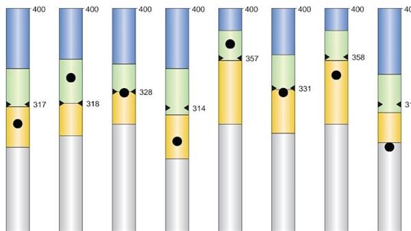 شرح لنتيجة الصف الثاني الثانوي 2021 ودلالات الألوان 48111