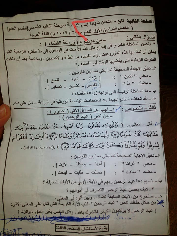 امتحان لغة عربية للشهادة الإعدادية من شمال سيناء 2019 49807010