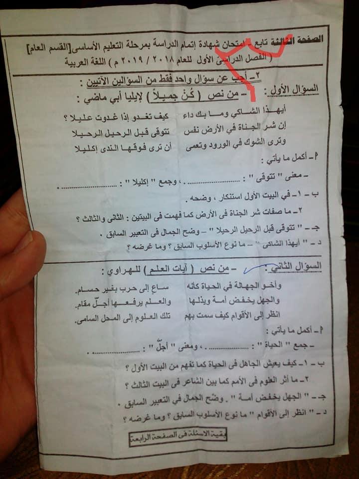 امتحان لغة عربية للشهادة الإعدادية من شمال سيناء 2019 49938810