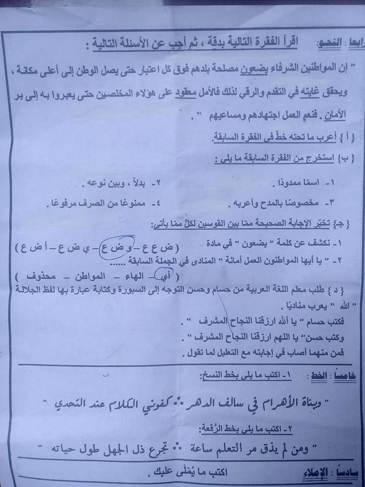 إجابة سؤال نحو اللغة العربية للشهادة الإعدادية 2019 الإسماعيلية 49950010