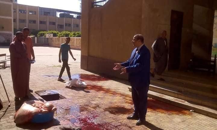 إحالة مدير مدرسة شئون قانونية و استبعاده لإستغلاله فناء المدرسة فى ذبح العجول 67914110