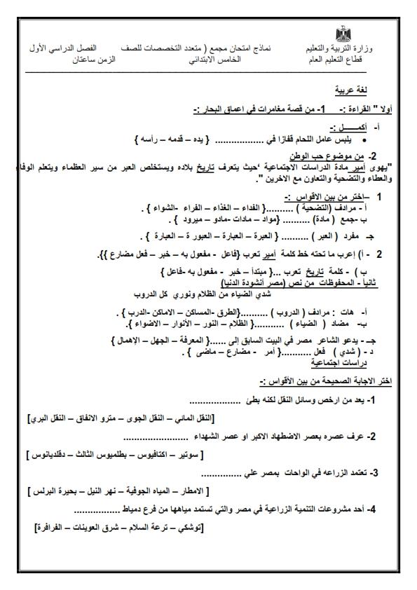 النماذج الإرشادية لكل فرق ابتدائى و إعدادى الإمتحان الموحد عربى و لغات ترم أول 2021 Aay_ai13