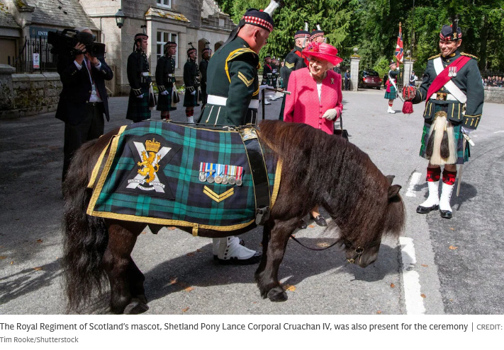 Tribute to HRH The Duke of Edinburgh - Page 6 Scree143