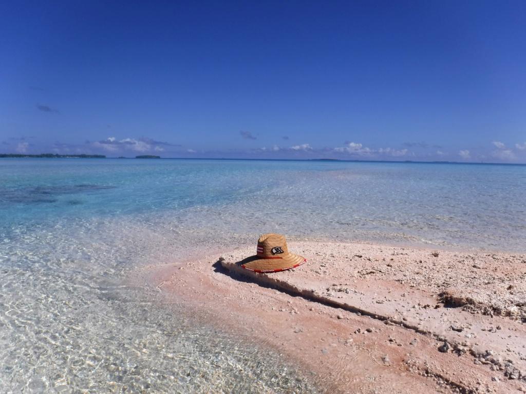Gros trip Polynésie Été 2018 - Page 2 Dscf2010